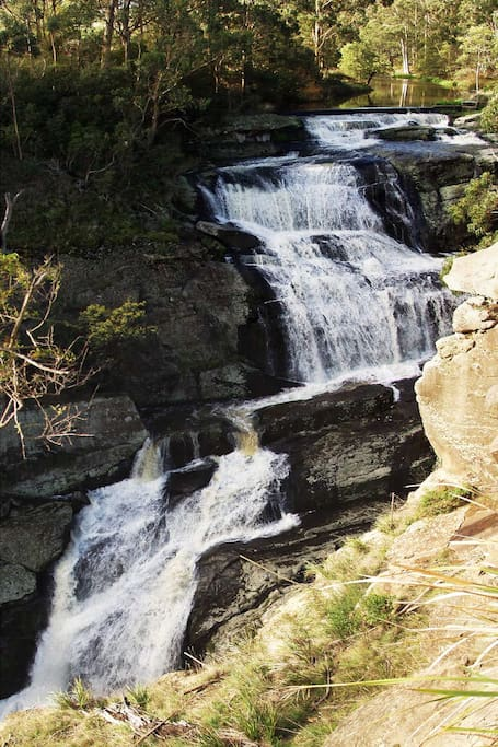 *  Must see . Agnes Falls 10 km perfect picnic /photo opportunity 65 mtr vertical drop - 1.2mtrs rainfall annually .