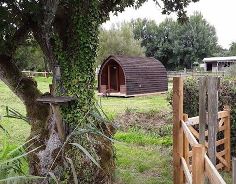 Kingfisher - Devon Lakeside Glamping Pod