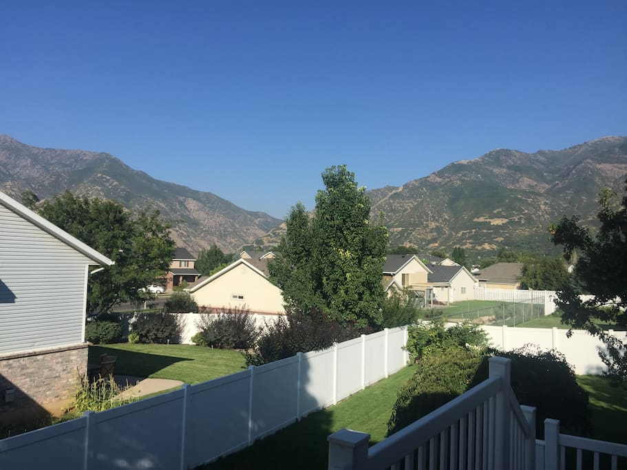 View from Deck (Summer)