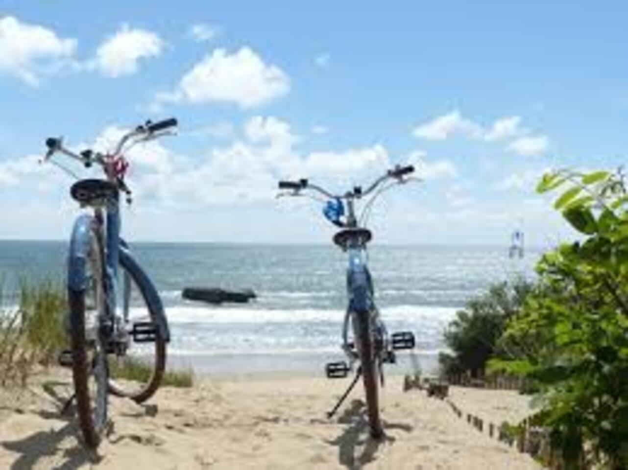 Pistes cyclables et de randonnées