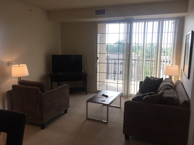 MODERN 2BR/2BA In Downers Grove - Downers Grove - Apartment