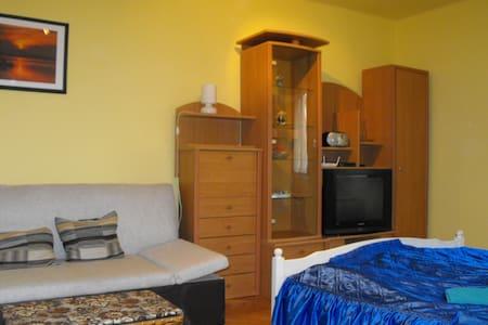 Egy szobás lakás Szombathelyen - Szombathely - Apartamento
