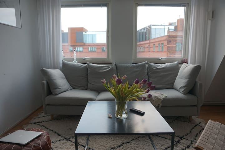 Central, Modern, Spacious Apartment in Lund