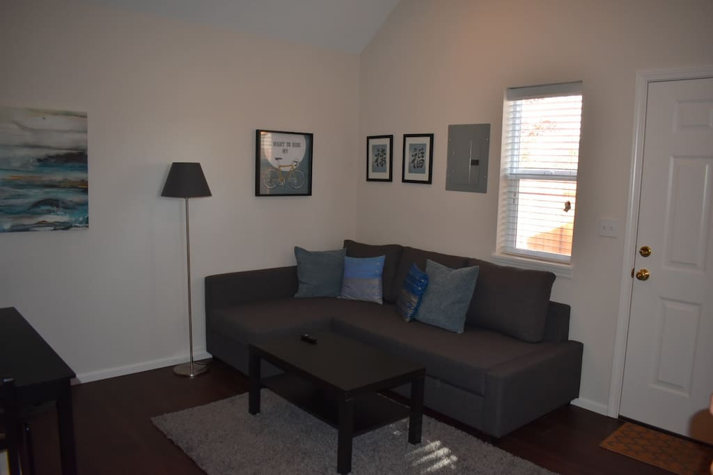 Living Area with Queen-Sized Sofa Bed