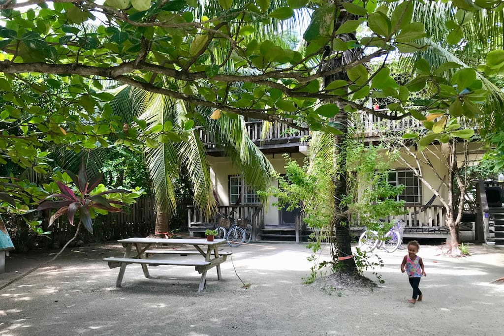 Our tree filled property makes for a quiet, shady spot that you can come back home to and relax, listening to the birds while swinging in your hammock.