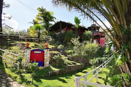 🌳Finca Campo Alegre (San Juancito)⚡⭐
