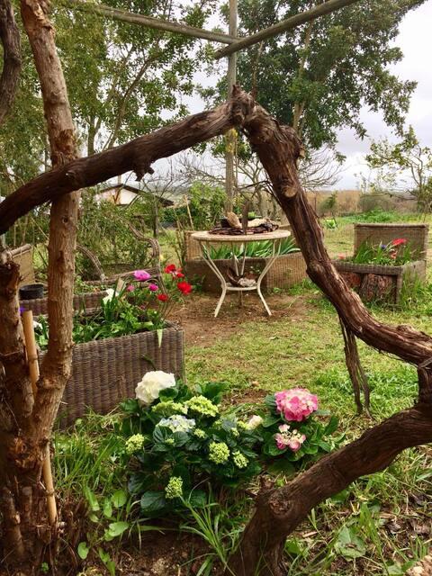 El Vergelito, Casa De Campo En Aljaraque