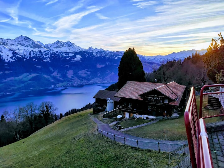 ix. Historic Swiss Chalet