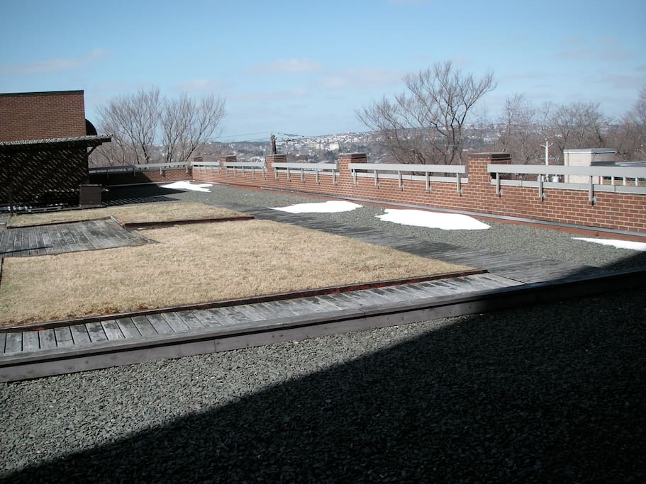 Roof Garden, on floor of my unit