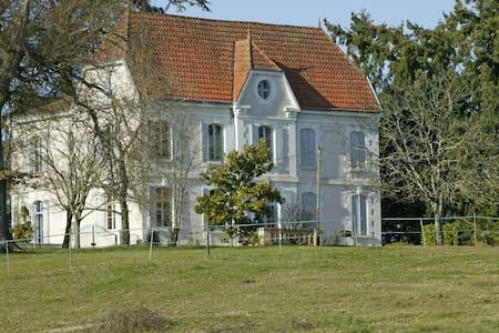 Manor House near Bergerac. sleeps 12 - Bergerac - Castillo