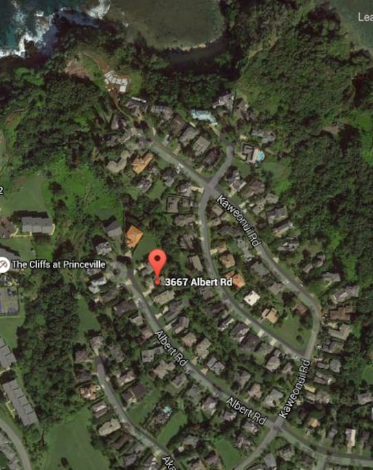 aerial view of home, Princeville neighborhood