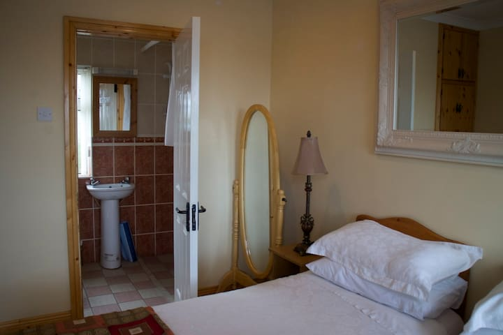 Twin Bed Apartment - Laois - Apartamento
