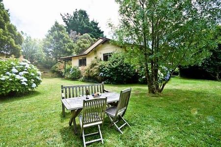 Arlington - Lavers Hill - Huis