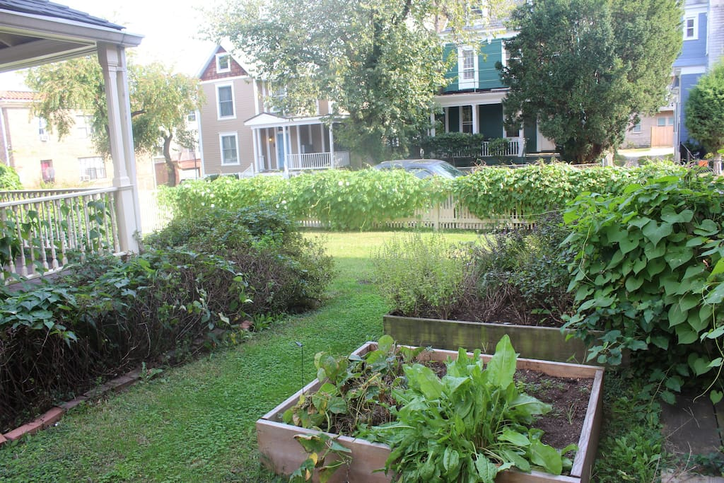 The entire front yard is shared space, so enjoy a walk through the garden and get some grass between your toes!