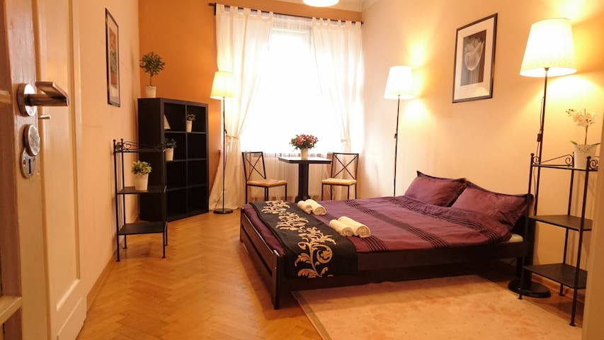 Very nice room in the old town - Krakova - Huoneisto