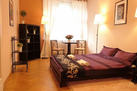 Very nice room in the old town - Krakau - Wohnung