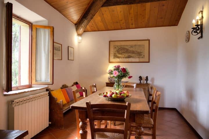 """Annarosa"" Apartment on Chianti hills"