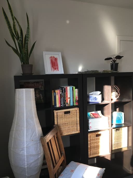 Some books and storage space for you in your room