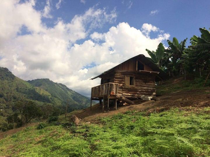 Hermosa  Cabaña en el Quindio Con Sendero