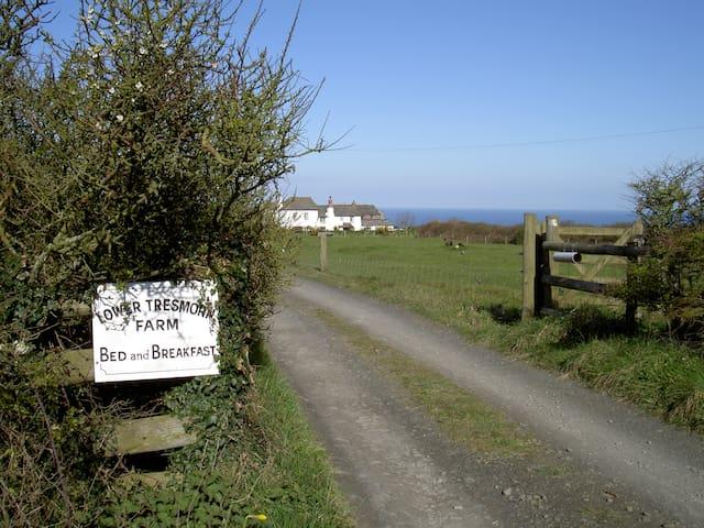 Lower Tresmorn-Homeward Down - Crackington Haven - Bed & Breakfast