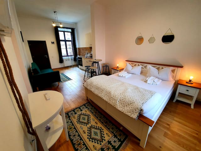Maximus apartments #1