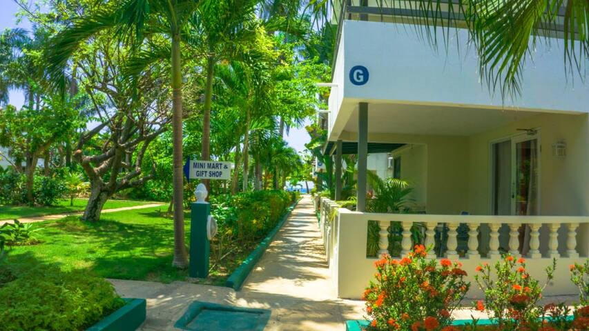 Pathway to our Beach