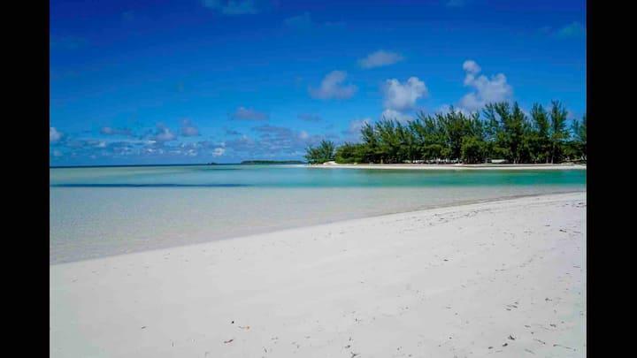 Sunny Daze 1 bed, 1 bath, 1 minute to the beach