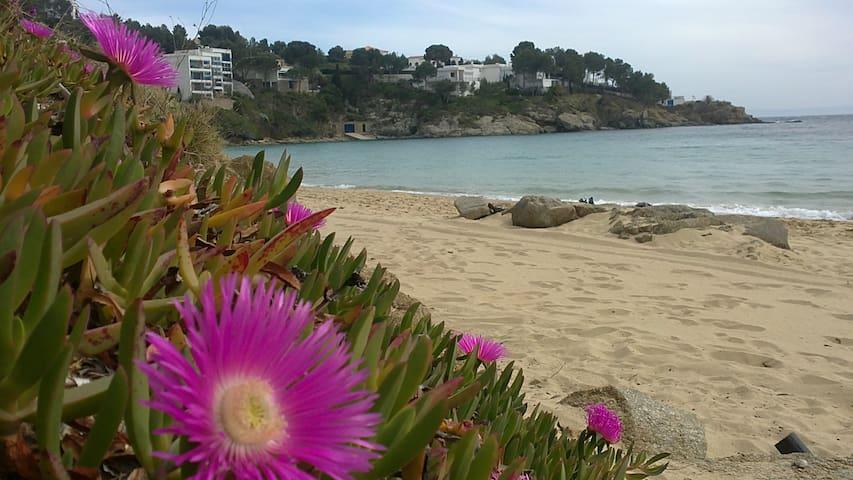Appartement à Rosas avec vue superbe sur la mer