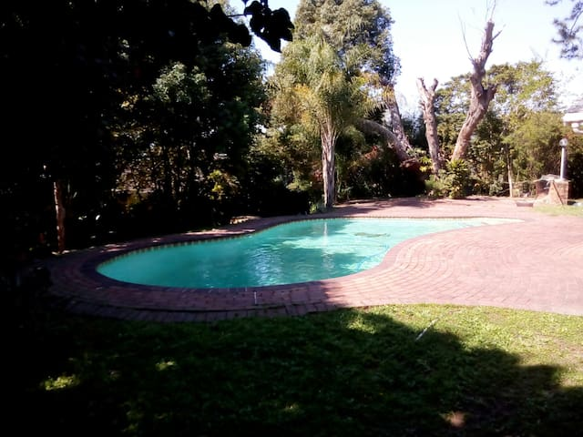 Amazing private garden with pool. - Westville - House