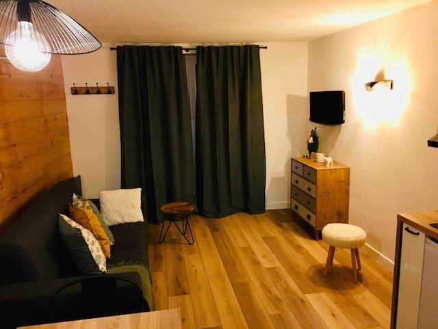 Studio cosy à Vars Les Claux
