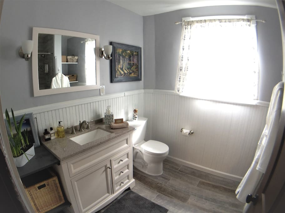 Newly remodeled bathroom (shared between 2 rooms)