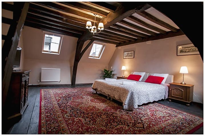 LUXURY RED LION VILLA 2 - Antwerpen - Villa