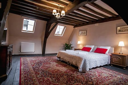 LUXURY RED LION VILLA 2 - Antwerpen