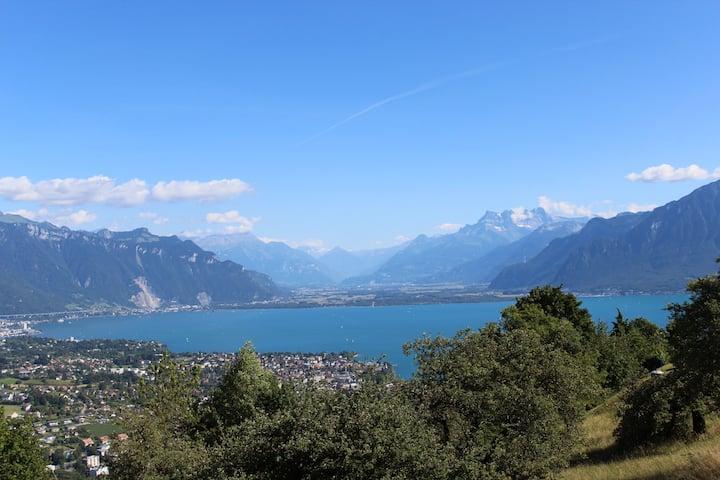 Parfait pour visiter Vevey/Montreux