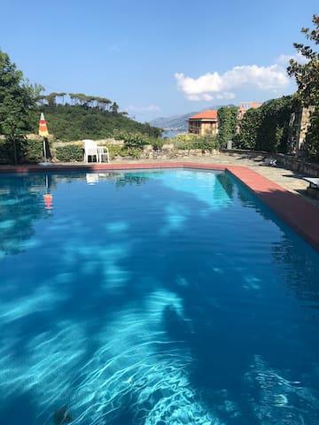 Piscina,giardino privato,parcheggio 010007-LT-0311