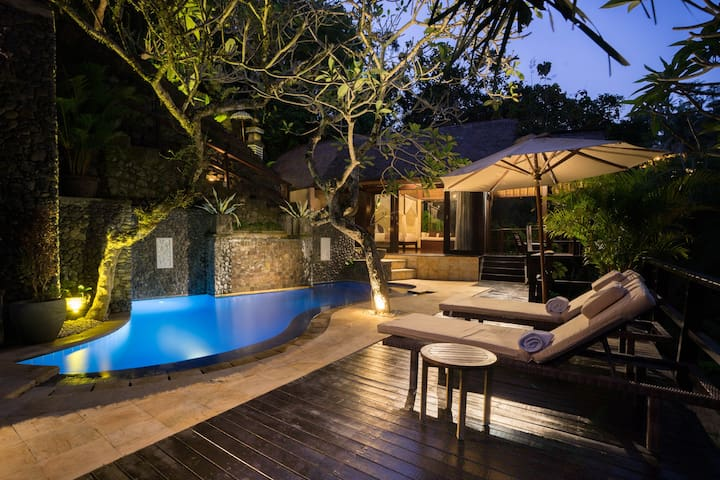 """Emma, Airbnb On-Line Guest Review:  """"...The villa itself has everything you could ever want-comfortable bed, Bluetooth speaker, robes, fastest internet in Bali.. private pool overlooking jungle.  You're never going to want to leave...magical place."""""""