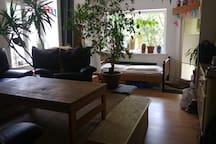 Großzügiges Zimmer+Terasse im Herzen Braunschweigs