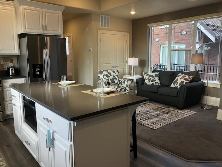 New Luxury Living Unit 11 in Downtown Provo