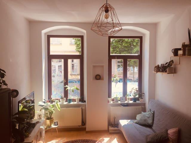 Gemütliche Wohnung im besten Viertel + Parkplätze