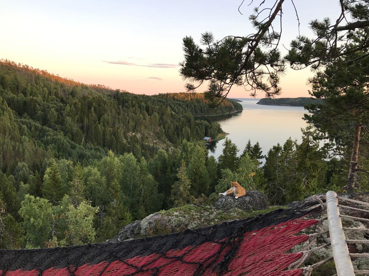 Går du upp på berget kan du vila och njuta i en av våra hängmattor. Möjligt att du får sällskap av någon av våra katter :) Det tar ca 10 min att komma hit upp