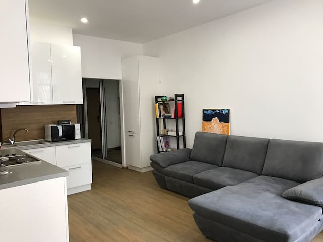 Minimalistic studio apartment near old city center - Kiev - Appartement