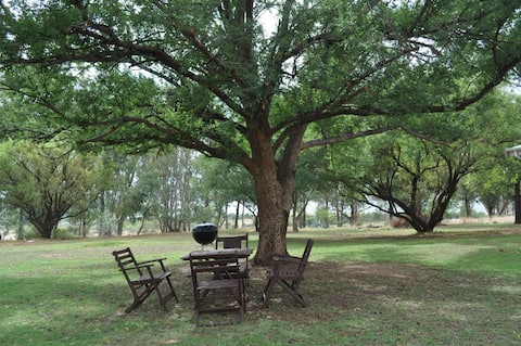 Elm Tree Stay