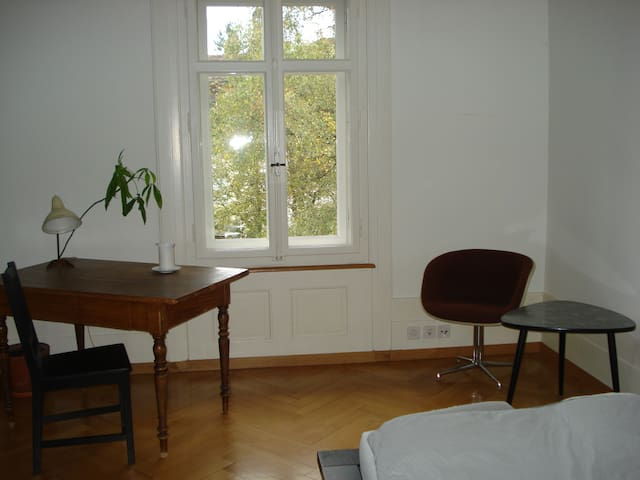 Beautiful room in lovely flat near Old Town - Berna - Apartamento