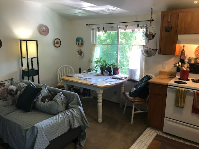 Cozy 1 bed/1 bath very close to downtown Chico