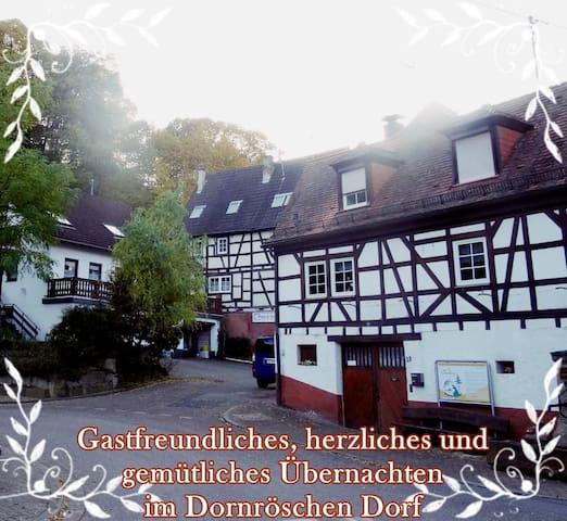 Extraordanary house in a fairy tale village