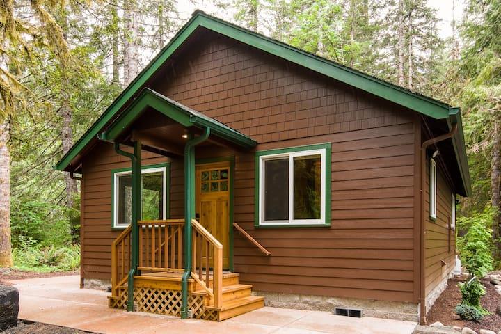 "New ""quaint"" McKenzie Riverfront Cabin - Lane County - Casa"