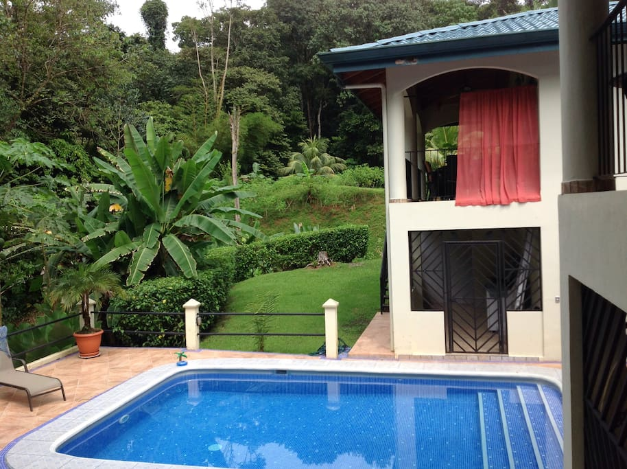 Pool, house and jungle view