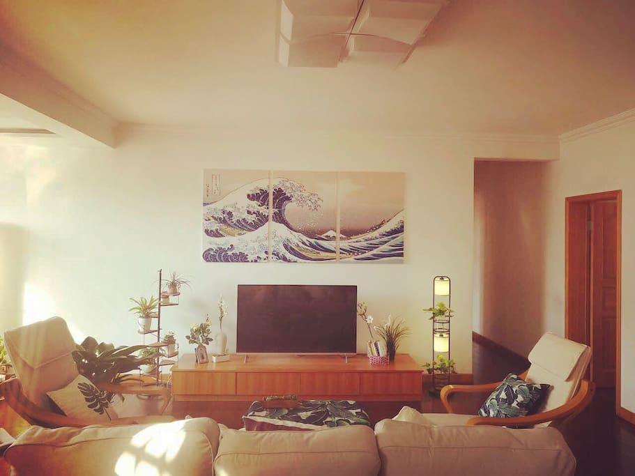 一百平超大客厅