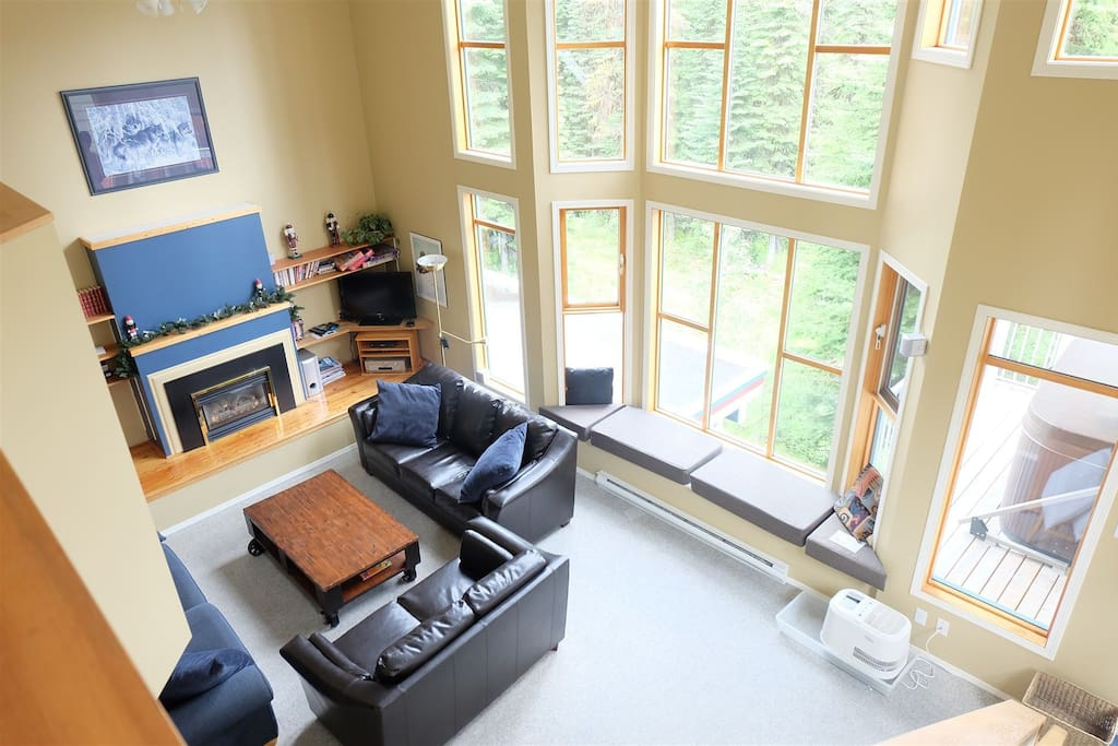 Large Living Room with Lots of Light!