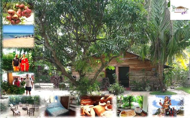Mala's Home Stay - Family Cottages(Gardens)